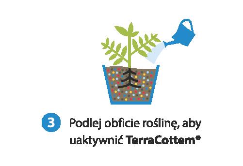 Podlej obficie roślinę aby uaktywnić TerraCottem