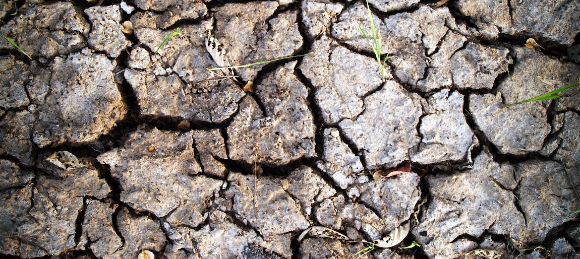 Degradacja gleby