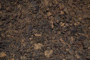 kondycjonowanie gleby