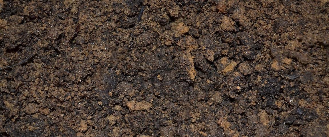 kondycjonowanie gleby na czym polega